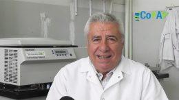 Curso on line: Temas de Actualización en Inmunología