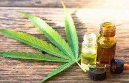 20 – CANNABIS MEDICINAL | Rol de la Farmacia en la Argentina